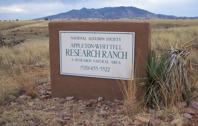 Visiting The Research Ranch