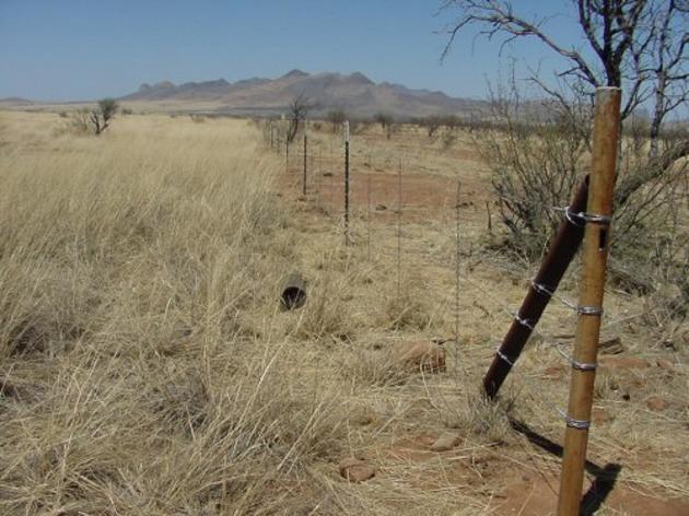 Wildlife-friendly Fences